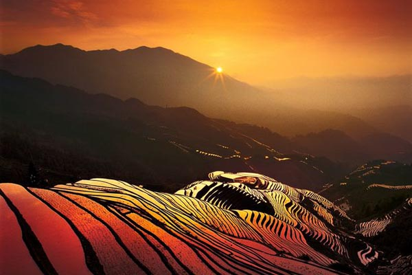 Longji Rice Terrace sunset oil paing style