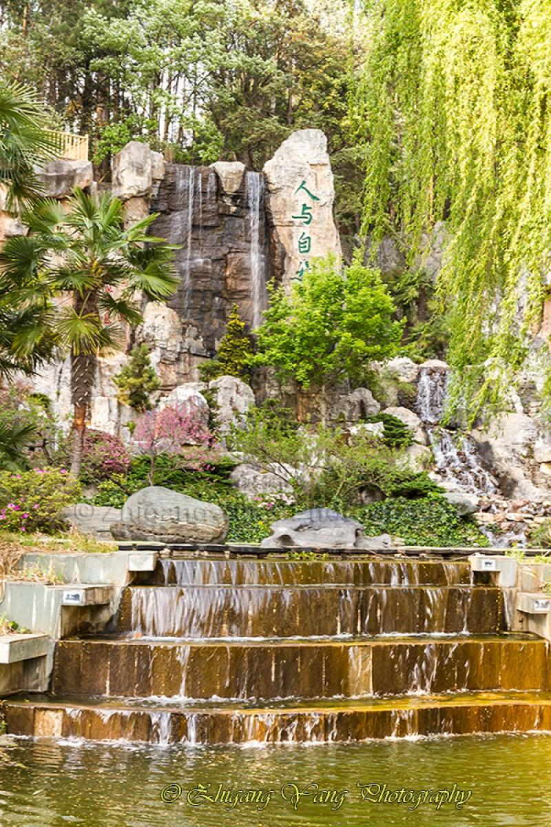 Waterfall from Rockery