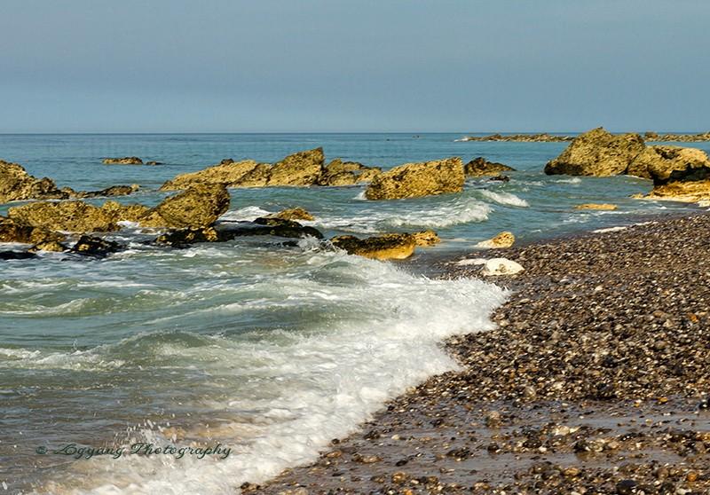 Seashore St Martin aux Buneaux