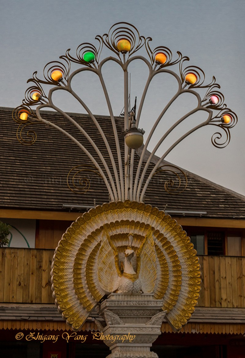 Streetlights with peacock style