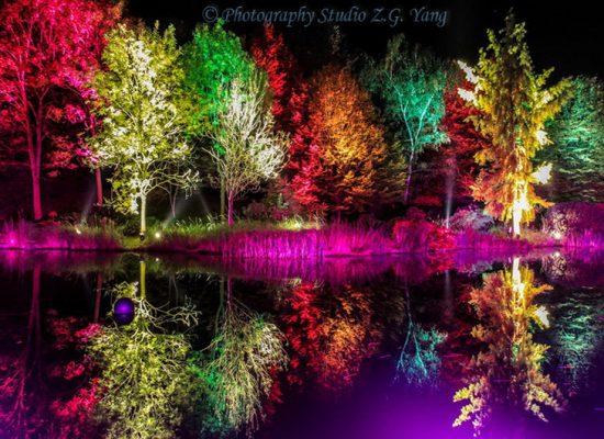 Herbstleuchten in Maximilianpark, Germany