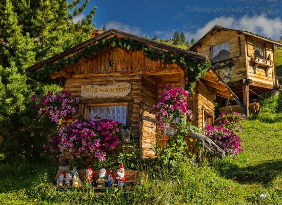 House decorated with pitunia, Italy
